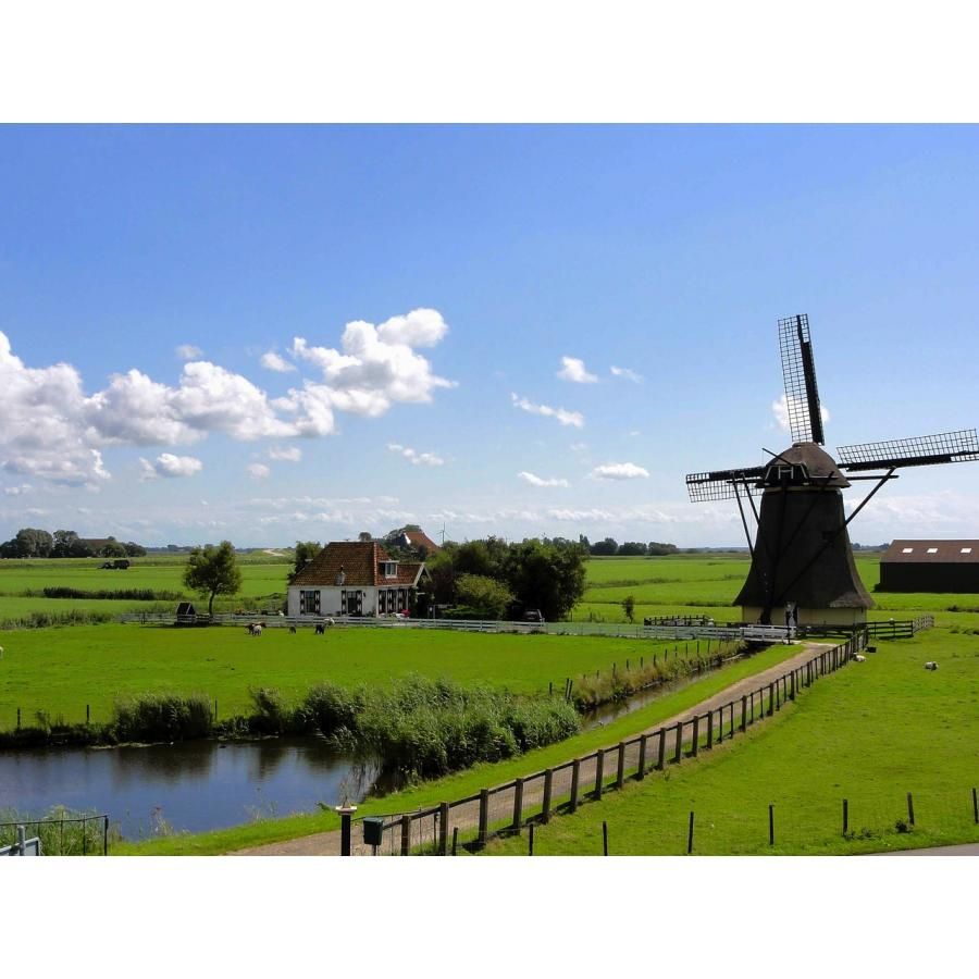 netherlands-97830_1280.jpg